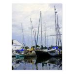 Puerto deportivo de Titusville Tarjetas Postales
