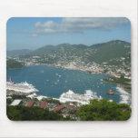 Puerto en las Islas Vírgenes de St Thomas los Tapete De Ratones