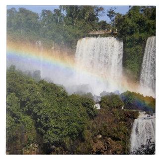 Puerto Iguazu, la Argentina. El impresionante Azulejo Cuadrado Grande