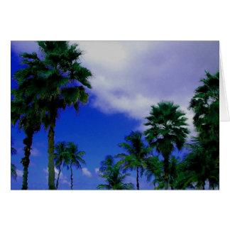 Puerto Rican Palm Notecard