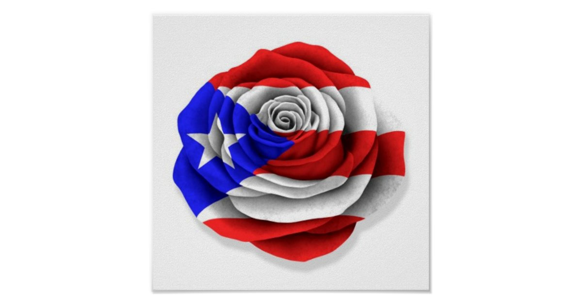 puerto rican rose flag on white poster