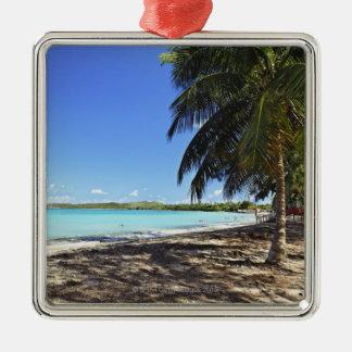 Puerto Rico, Fajardo, isla de Culebra, siete mares Ornatos
