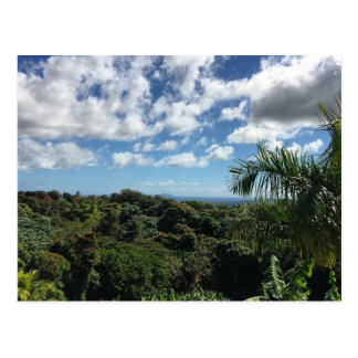 Puerto Rico (Humacao & Vieques Island) Postcard