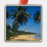 Puerto Rico, Isla Verde, árboles de palma Adorno Cuadrado Plateado