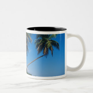 Puerto Rico, Isla Verde, árboles de palma Taza De Dos Tonos