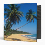 Puerto Rico, Isla Verde, palm trees. 3 Ring Binder
