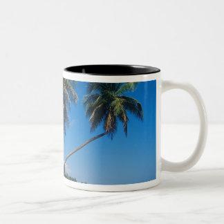 Puerto Rico, Isla Verde, palm trees. Coffee Mugs