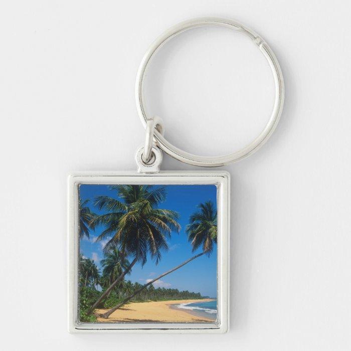 Puerto Rico, Isla Verde, palm trees. Keychain