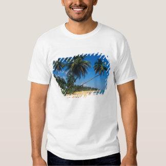 Puerto Rico, Isla Verde, palm trees. T Shirts