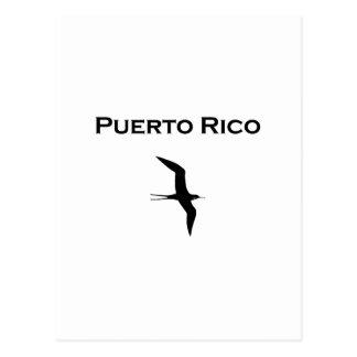 Puerto Rico Man O' War Bird Postcard