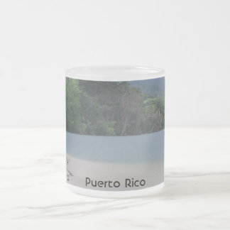 Puerto Rico 10 Oz Frosted Glass Coffee Mug