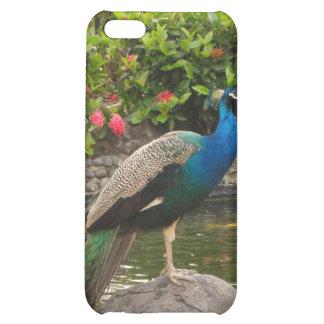 Puerto Rico Peacock  iPhone 5C Case