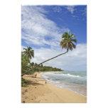 Puerto Rico. Playa Puerto Rico de Tres Palmitas Fotografias