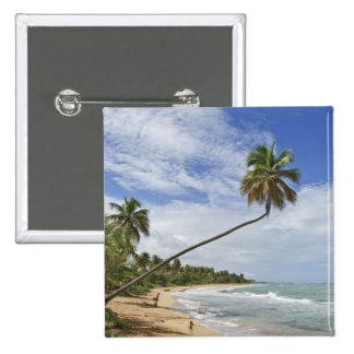 Puerto Rico. Playa Puerto Rico de Tres Palmitas Pins