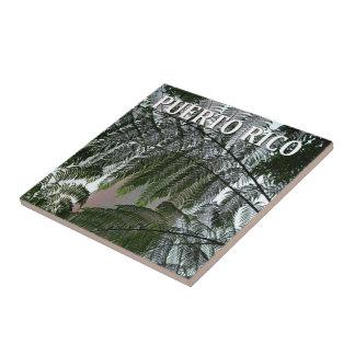 Puerto Rico Rainforest Tower Photo Souvenir Ceramic Tile