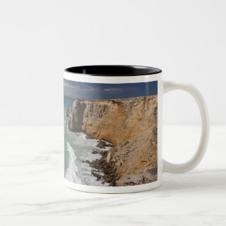 Puerto Rico, West Coast, Cabo Rojo, coastline 2 Coffee Mugs