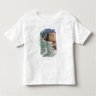 Puerto Rico, West Coast, Cabo Rojo, coastline Toddler T-shirt