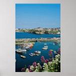 Puerto rojo de Newquay, Cornualles, flores BRITÁNI Póster