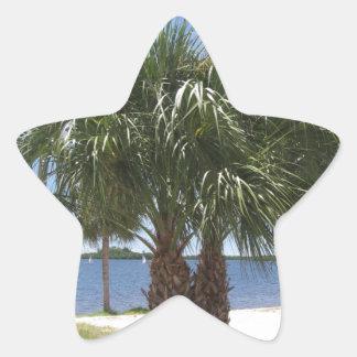 Puerto soleado pegatina en forma de estrella