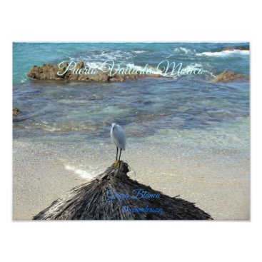 Beach Themed Puerto Vallarta Mexico-Garza Blanca Photo Print