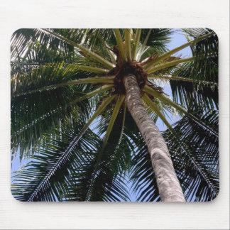 Puerto Vallarta Palm Tree Mouse Pad
