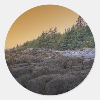 Puesta del sol 4 de Maine Etiquetas Redondas
