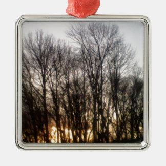 Puesta del sol a través de árboles adornos