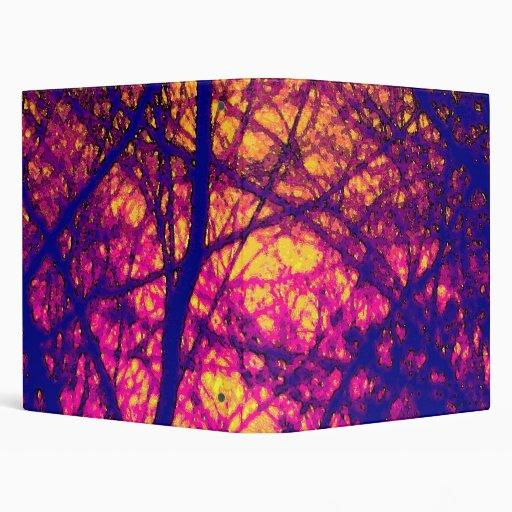 Puesta del sol a través de la carpeta de las ramas