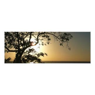 Puesta del sol a través de la impresión panorámica impresiones fotográficas