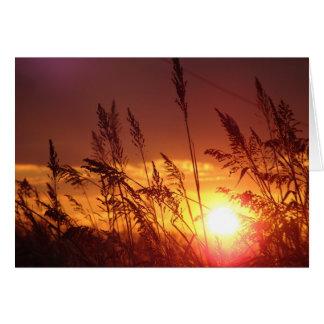 Puesta del sol a través de la tarjeta de nota del
