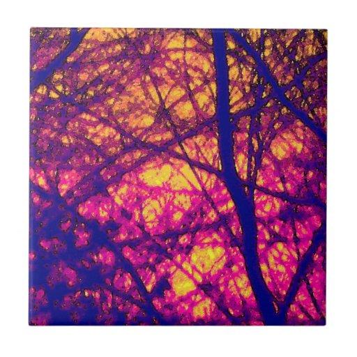 Puesta del sol a través de la teja de las ramas
