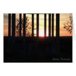 Puesta del sol a través de las columnas en Histria Tarjetas
