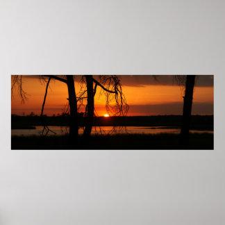 Puesta del sol a través de los árboles poster