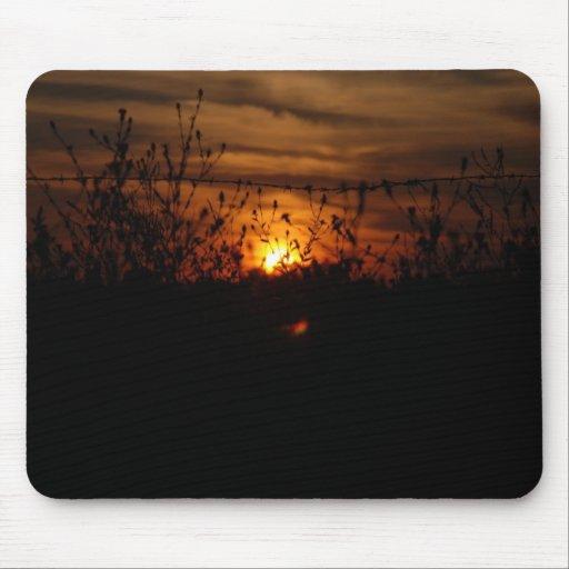 Puesta del sol a través de Wildflowers Alfombrilla De Ratón