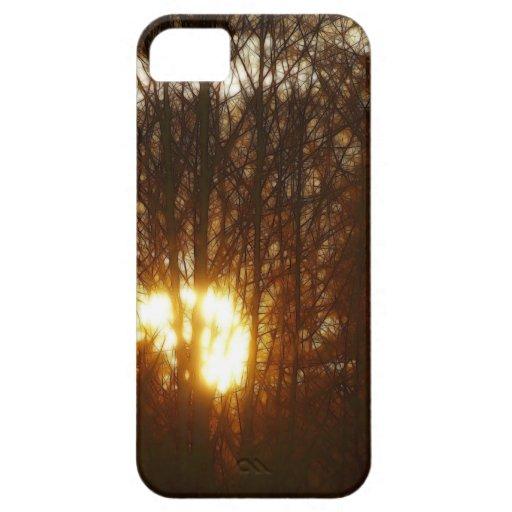 Puesta del sol a través del caso del iPhone 5 del  iPhone 5 Case-Mate Carcasa