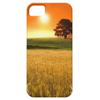 Puesta del sol africana en los campos de maíz funda para iPhone SE/5/5s