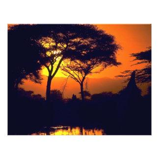 Puesta del sol africana, parque nacional de Arusha Tarjetón