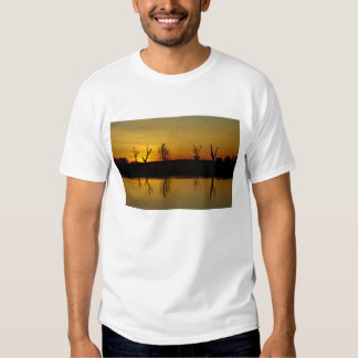 Puesta del sol, agua amarilla Billabong 2 Camisas