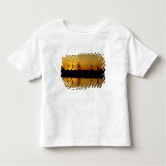 Puesta del sol, agua amarilla Billabong 2 Playera De Bebé