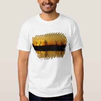 Puesta del sol, agua amarilla Billabong 2 Remera