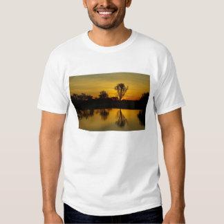 Puesta del sol, agua amarilla Billabong Remeras