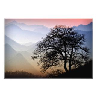 Puesta del sol ahumada de la montaña de la ruta cojinete