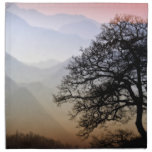 Puesta del sol ahumada de la montaña de la ruta ve servilletas