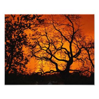 Puesta del sol anaranjada fotografías