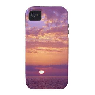 Puesta del sol anaranjada púrpura de la Florida Case-Mate iPhone 4 Fundas