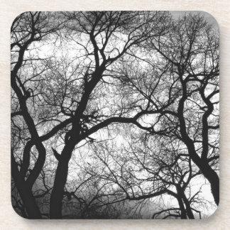 Puesta del sol blanco y negro de los árboles del b posavaso