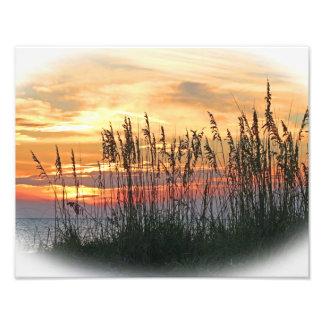 Puesta del sol brillante cojinete