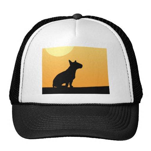 Puesta del sol bull terrier del verano gorras de camionero