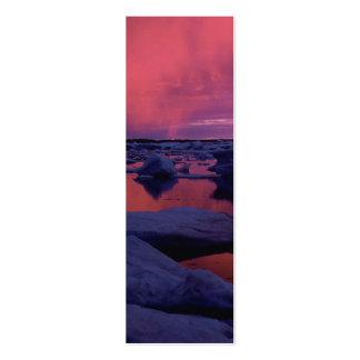 Puesta del sol Canadá de la Bahía de Hudson Tarjetas De Visita Mini
