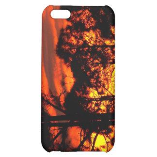 Puesta del sol con amarillo rojo de los pinos